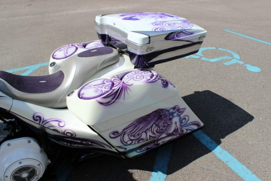 Camtech Bagger Custom Paint